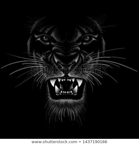 Fekete oroszlán illusztráció heraldika tetoválás terv Stock fotó © Genestro