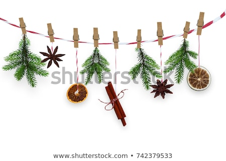 christmas spices decoration stock photo © m-studio