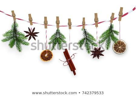 クリスマス スパイス 装飾 背景 デザート 健康 ストックフォト © M-studio
