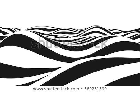 stylish flowing wave vector background stock photo © sarts