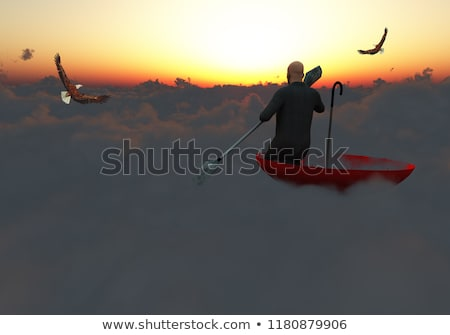 eagle and fantastic sunset   3d render stock photo © mariephoto