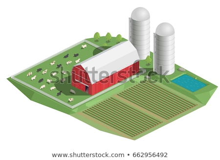 Isometric 3d vector illustration of windmill and cows. Stock photo © curiosity