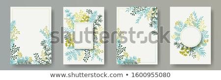 Invito carte tarassaco modello frame design Foto d'archivio © Olena