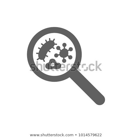 Icône loupe bactéries saleté forme Photo stock © Olena