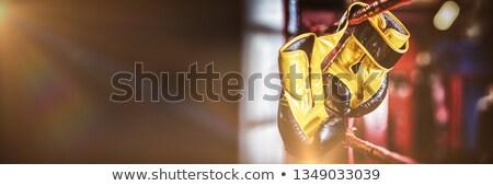 Amarelo luvas de boxe enforcamento boxe anel Foto stock © wavebreak_media