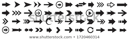 Seta ícone diferente estilo vetor símbolo Foto stock © sidmay