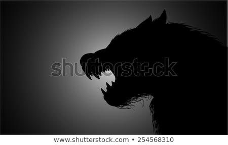 満月 狼 怖い モンスター オオカミ 男 ストックフォト © Krisdog