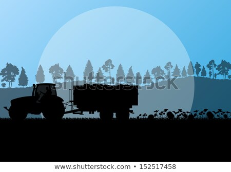 Colorful pumpkins on a tractor trailer in the autumn Stock photo © dash