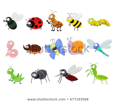 Cartoon insecten cute tuin dieren dier Stockfoto © mumut