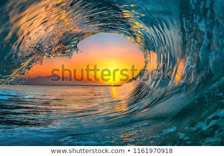 пляж · прозрачный · морем · вечер · воды · дерево - Сток-фото © wildman
