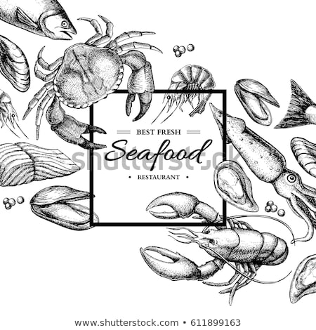 lobster seafood vector hand drawn illustration stock photo © robuart