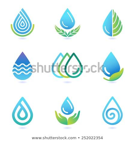 Primavera frescos agua mineral icono logo vector Foto stock © blaskorizov