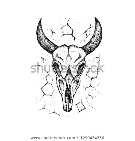 Stock photo: Dotwork Burnt Cow Skull