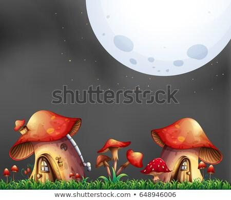 Scene with two mushroom houses at night Stock photo © colematt