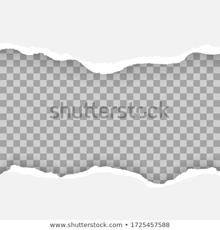 Hole Set Torn Paper Isolated Transparent background Stock photo © barbaliss