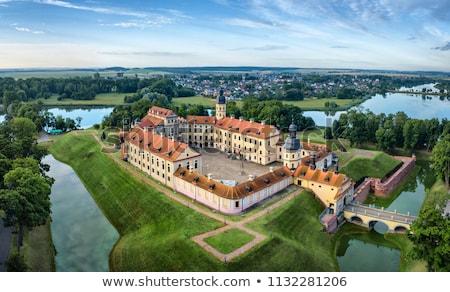 замок Беларусь жилой семьи здании стены Сток-фото © borisb17