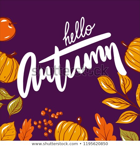 autume fall leaves background design stock photo © solarseven