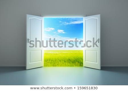 Otwartych drzwi sali 3d ilustracji niebo domu trawy Zdjęcia stock © ISerg