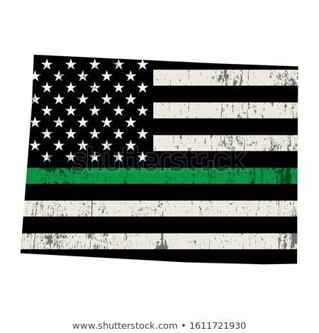 Колорадо военных поддержки американский флаг иллюстрация форма Сток-фото © enterlinedesign