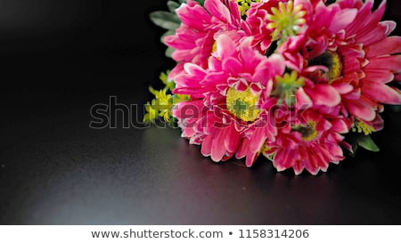 Valentines day greeting card with gerbera and gift Stock photo © karandaev
