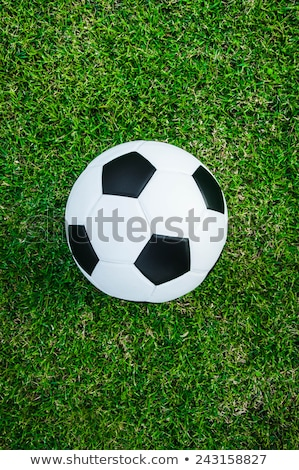 Vertical view of local soccer field Stock photo © Mps197