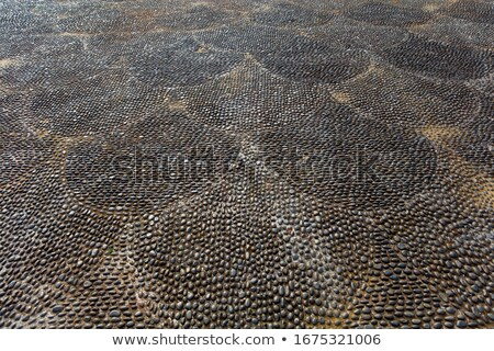 Cobbled pavement made of rounded pebbles Stock photo © boggy