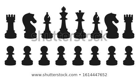Nero legno pezzo degli scacchi cavaliere fronte view Foto d'archivio © kup1984