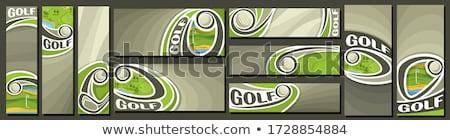 pallina · da · golf · verde · prato · golf · club · tramonto - foto d'archivio © moses