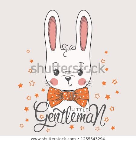 Pequeno coelho cavalheiro vista lateral adorável branco Foto stock © feedough