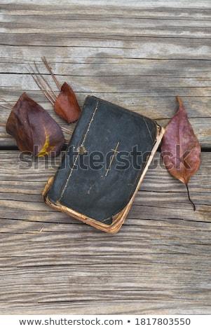 Kruis antieke bijbel macro foto metaal Stockfoto © Gordo25