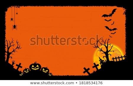 Foto stock: Halloween · cartão · postal · abóbora · árvore · olho · grama
