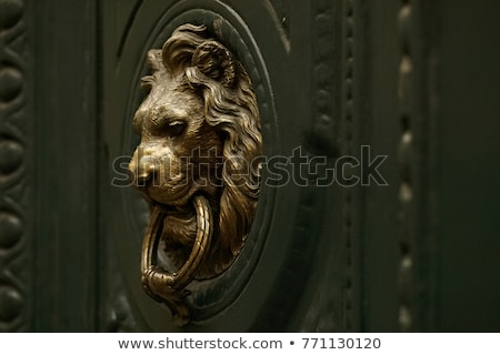 Lion door knocker on wood background  Stock photo © inxti