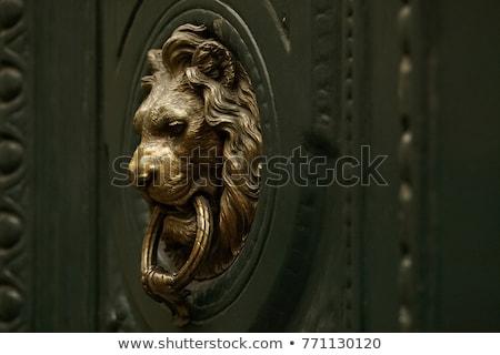 aslan · kapı · kilitlemek · dizayn · Metal · ejderha - stok fotoğraf © inxti