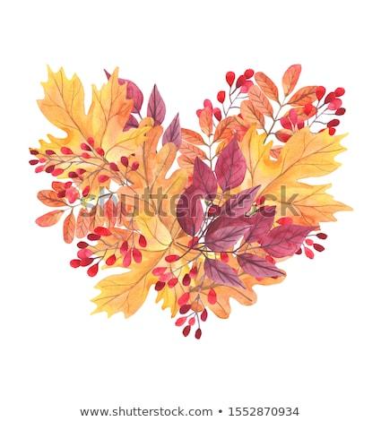 mooie · artistiek · natuurlijke · bladeren · ontwerp · achtergrond - stockfoto © elmiko