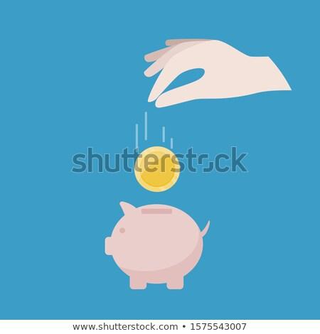 piggy · bank · queda · dinheiro · porco · vetor · ícone - foto stock © alegria111
