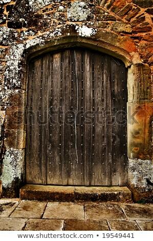 Imposing wooden doors entry Stock photo © Anterovium