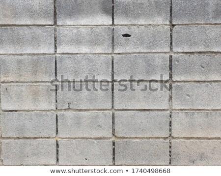 szabadtér · cement · tégla · padló · kert · stock - stock fotó © meinzahn