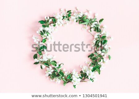 Pastel elma ağacı çiçekler eğim çiçek Stok fotoğraf © cammep