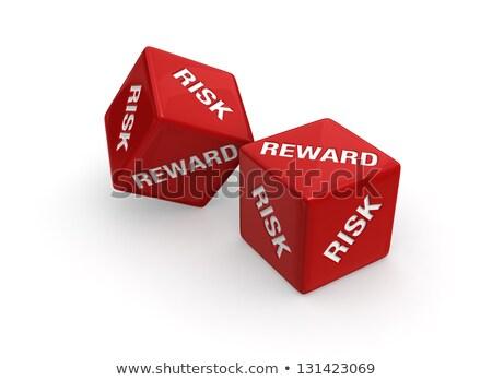 risk and reward dices Stock photo © flipfine