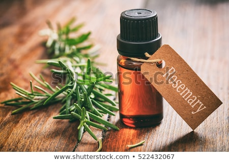 Glass bottle of essential oil and rosemary branch Stock photo © marimorena