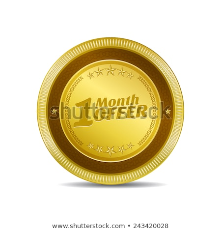 1 Month Offer Gold Vector Icon Button Stock photo © rizwanali3d