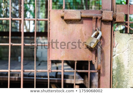 Acél ketrec ajtó zárolt kulcs probléma Stock fotó © Yongkiet