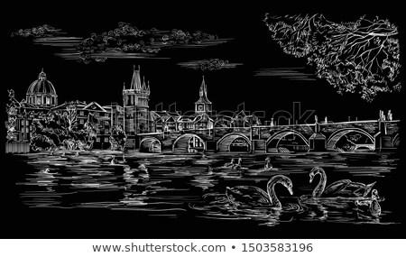 Прага белый реке Чешская республика воды любви Сток-фото © pedrosala