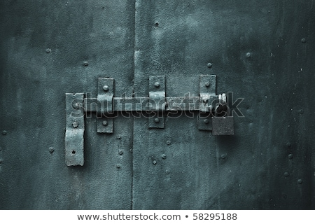 metal padlock on a door with a chain stock photo © mikhail_ulyannik