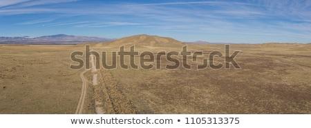 Tracks into a plain landscape Stock photo © olandsfokus