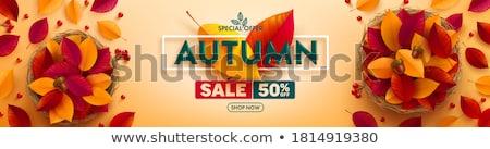 vektör · dekoratif · sonbahar · satış · bulanık · karikatür - stok fotoğraf © beholdereye