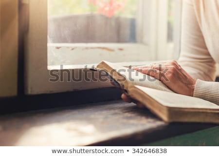 eller · tanınmaz · kadın · İncil · dua · eden · kitap - stok fotoğraf © leventegyori