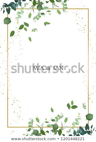 kleurrijk · bladeren · vector · krans · gekleurd - stockfoto © sgursozlu