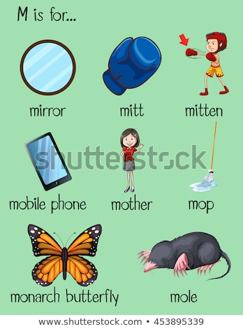 letter m and many words on poster stock photo © bluering