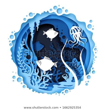 Jelenet meduza úszik vízalatti illusztráció hal Stock fotó © bluering